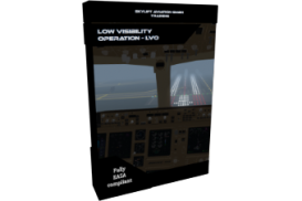 - Low Visibility Operation
